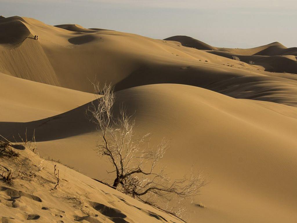 Maranjab Disert, Dunes