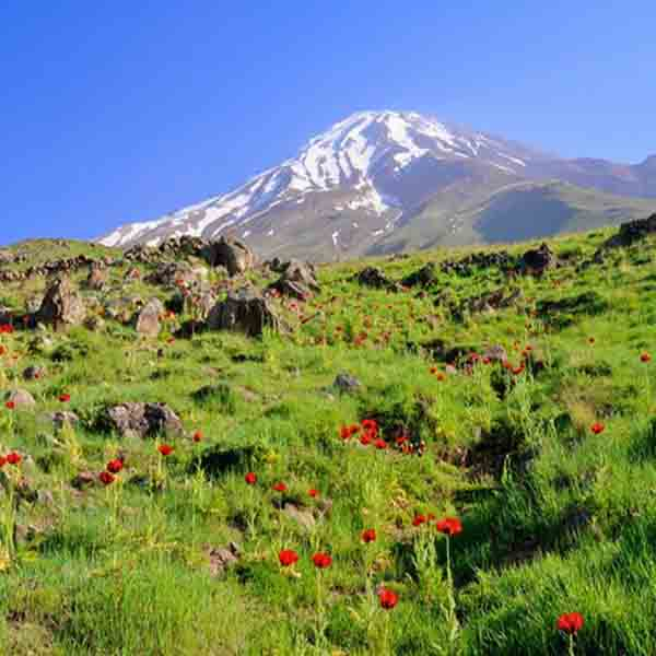 Hikking in Damavand foothill