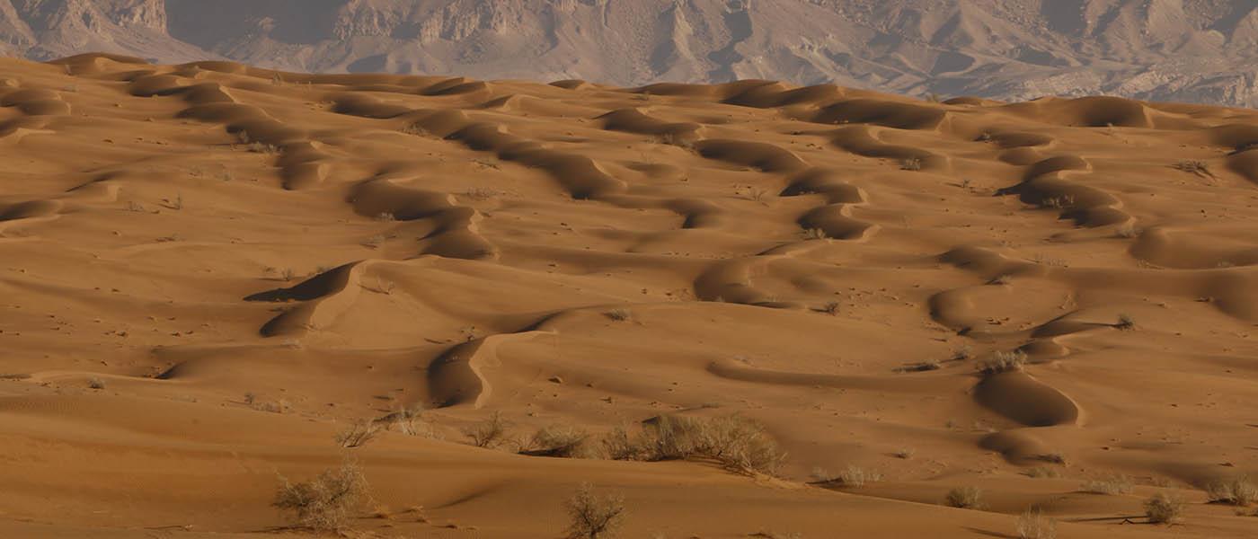 Maranjab desert, Sand hills
