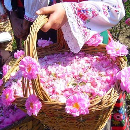 NIASAR, ROSE WATER FESTIVAL
